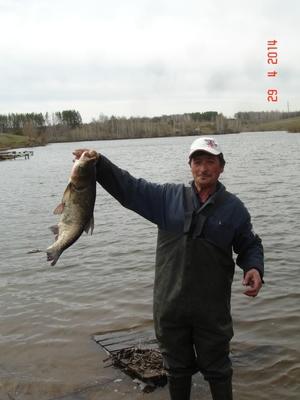платная рыбалка в тольятти ташла цена