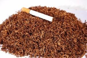 Купить весовой табак для сигарет дешево и гильзы в москве сколько процентов ндс на табачные изделия