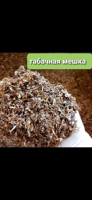 табачное изделие саранск